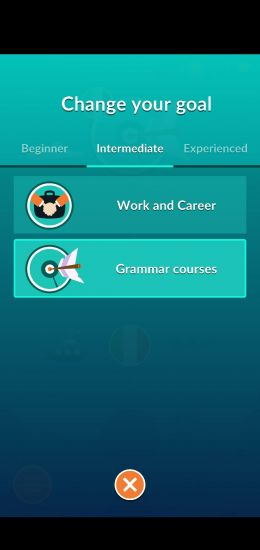 "A screenshot showing the two different language goal options for the intermediate level, ""Work and Career"" and ""Grammar Courses."""